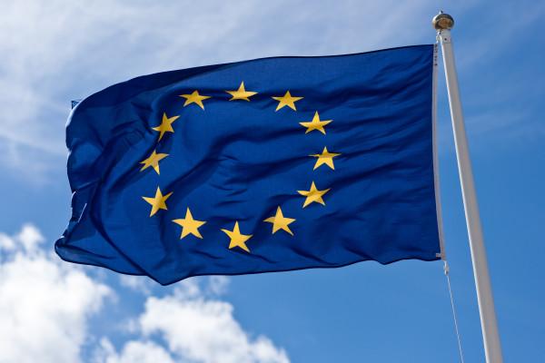 Een Europese Ondernemingsraad fungeert als onderhandelingspartner en mag de mening van een externe deskundige inroepen.
