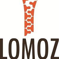 Als sponsor van Lomoz verzorgt MZ Services een workshop